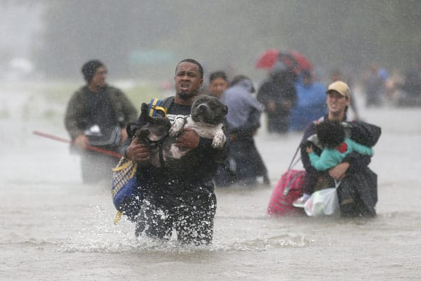 A man carries his dog through floodwaters above his knees from Hurricane Harvey in Beaumont Place, Texas.