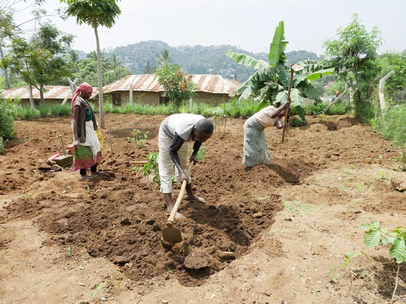 Members of Transfiguration parish in the Mabatini section of Mwanza, Tanzania, help with planting medicinal plants as part of the parish's holistic ministry of healing body, mind and soul.