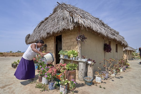 """Celestina Fernandes da Silva, a Catholic activist, waters flowers in front of her home in the Wapishana indigenous village of Tabalascada, Brazil, April 3, 2019. Discussions at the Amazon Synod have enlarged to include the theology of creation, """"where the Word of God resides."""" (CNS/Paul Jeffrey)"""